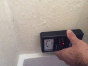 Rising Damp - St Kilda Building Inspection