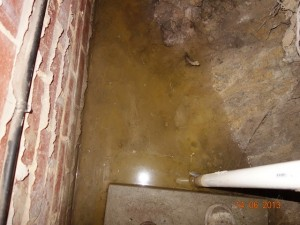 house-inspection-Bentleigh-damp-subfloor.jpg